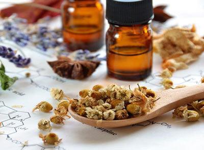 تدوین برنامهای برای آشنایی جامعه پزشکی با گیاهان دارویی