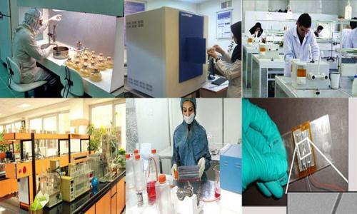 صدور گواهینامه دانش بنیان برای ۱۲۰ شرکت گیاهان دارویی