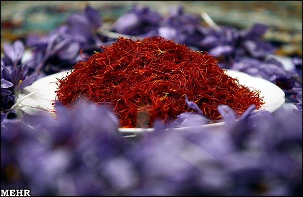 ۹۴ درصد زعفران دنیا در ایران تولید می شود