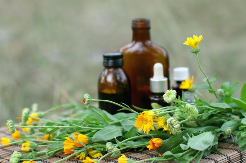 تأسیس داروخانه طبیعی و سنتی ارتقاء خدمت رسانی است