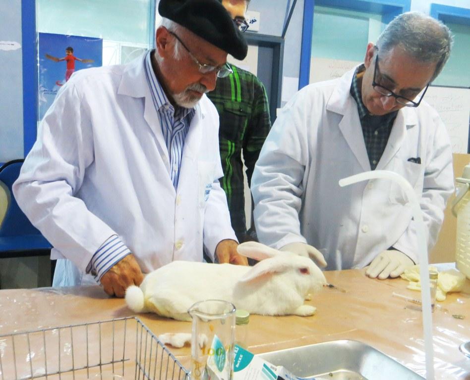 کارگاه آموزشی مطالعه حیوانی در روشهای فارماکولوژیک