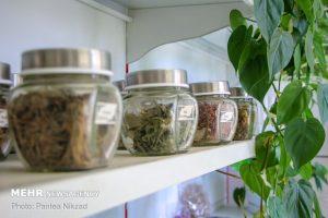 توسعه صنعت گیاهان دارویی با تدوین ۷ استاندارد