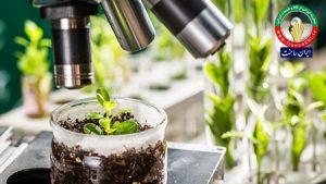 حاصل فعالیت ۱۴ ساله فناوران؛ ۵۰۰۰ محصول گیاهی و سنتی ایران ساخت مجوز گرفتند.