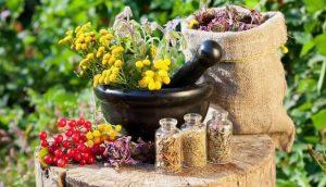 معاونت علمی اعلام کرد؛ تولید ۱۰ برابری داروها و محصولات گیاهی/بیش از ۵ هزار محصول ثبت شد.
