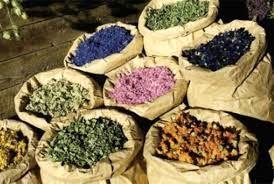 مجری طرح گیاهان دارویی وزارت جهاد کشاورزی از راه اندازی بارانداز گیاهان دارویی در کشور خبر داد.
