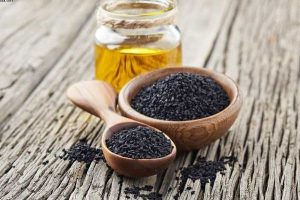مجری طرح گیاهان دارویی پیش بینی کرد: خودکفایی کشور در تولید گیاه سیاه دانه تا سال ۱۴۰۱